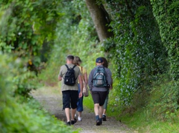 Walkers on trails close by to Heligan Woods
