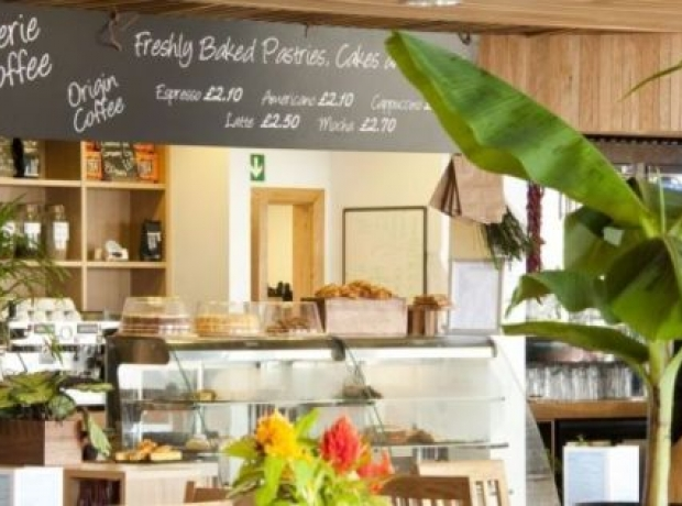 Numerous family restaurants are not far from Heligan Woods