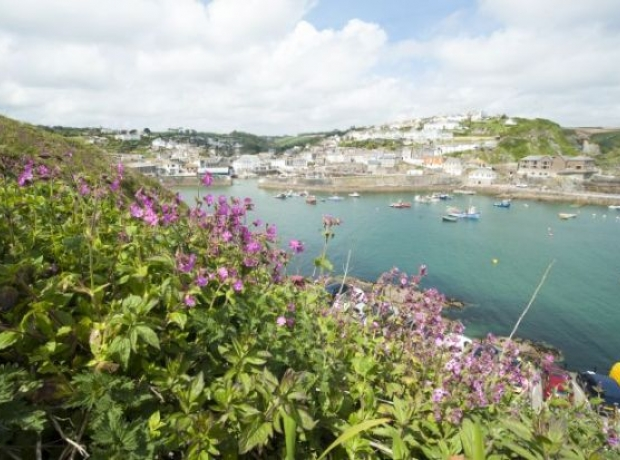 The beautiful Cornish countryside and coastline on our doorsetp