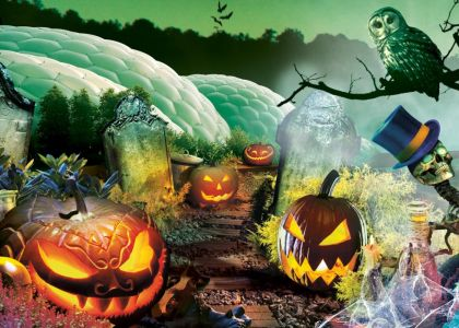 October Half Term Events Cornwall - Eden