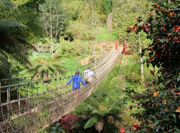 A woodland rope bridge - one of the many things to do nearby to Heligan Woods