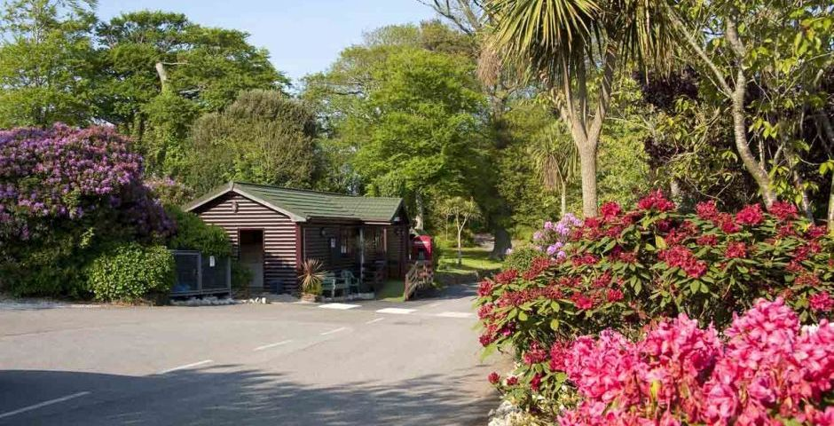 Welcome to Heligan Woods Camping and Caravanning